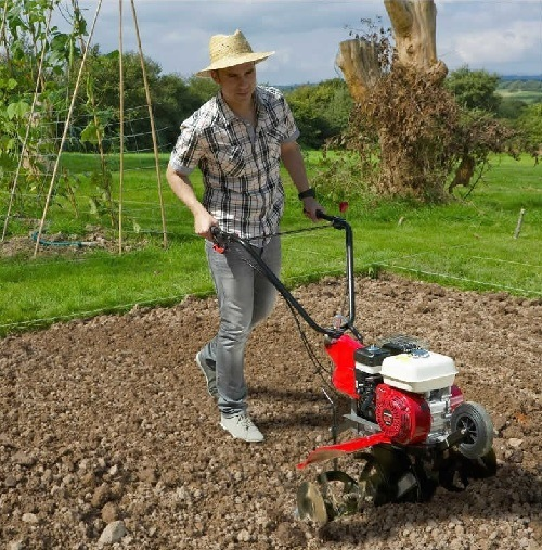 Man using a tiller in his garden