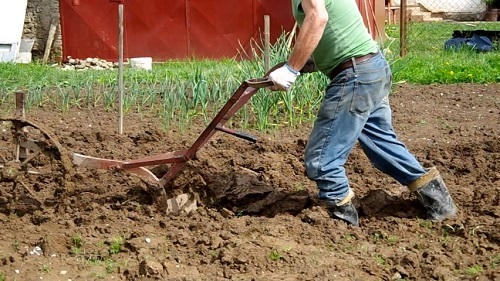 Plowing Soil By Hand