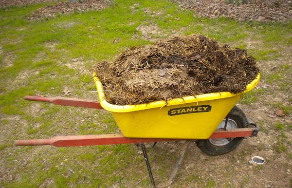 Wheelbarrow load.