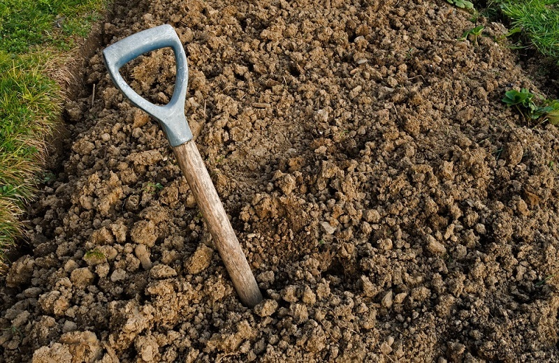 What You Need To Know To Till And Work Clay Soil