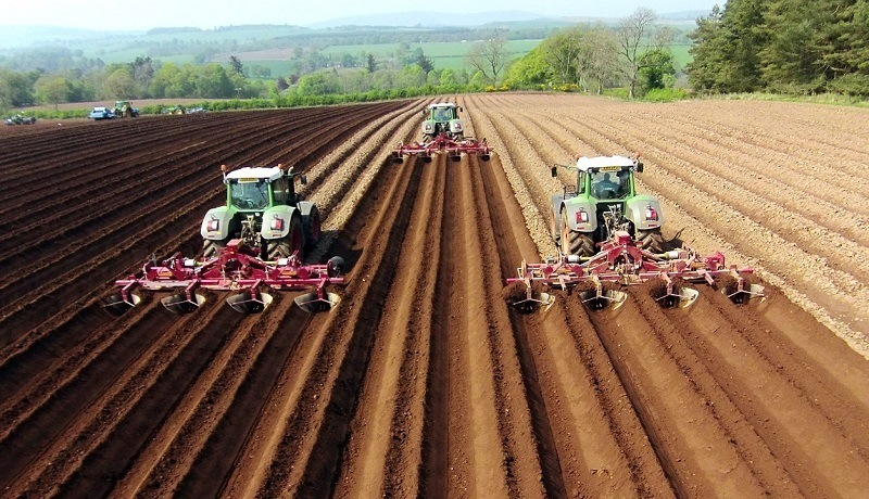Everything You Need To Know About Overtilling