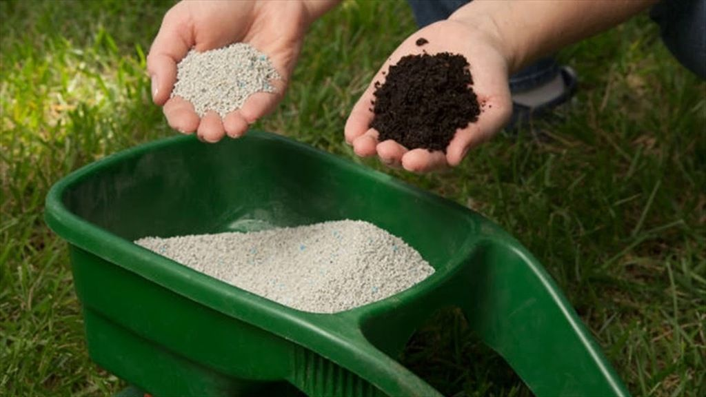 What You Need To Know About Synthetic Fertilizers