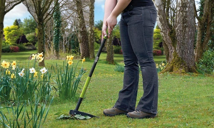 A woman using a weed puller.
