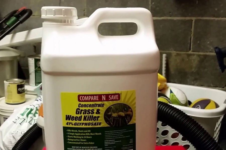 Compare-N-Save Grass And Weed Killer Review