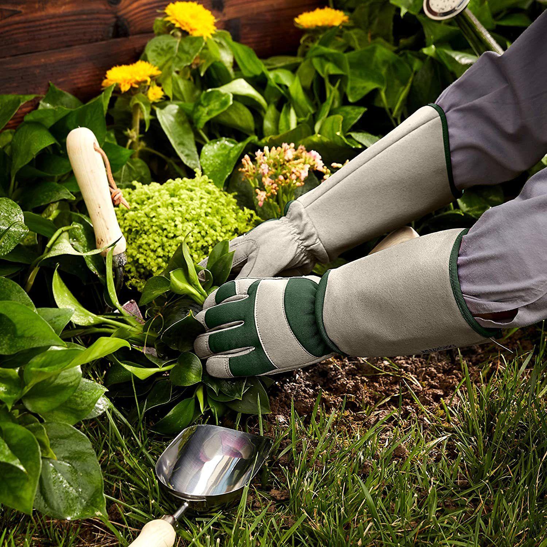 amazonbasics gardening gloves image
