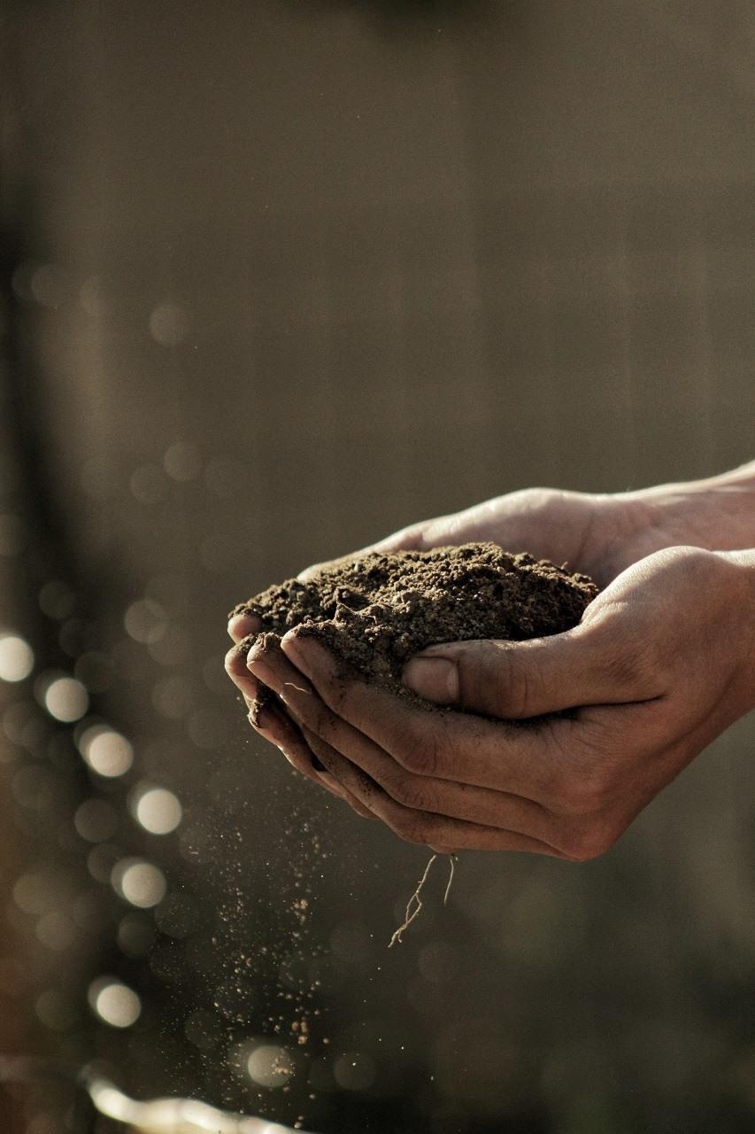 garden soil image