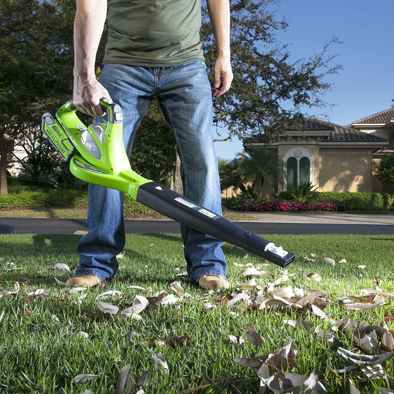 greenworks cordless leaf blower image