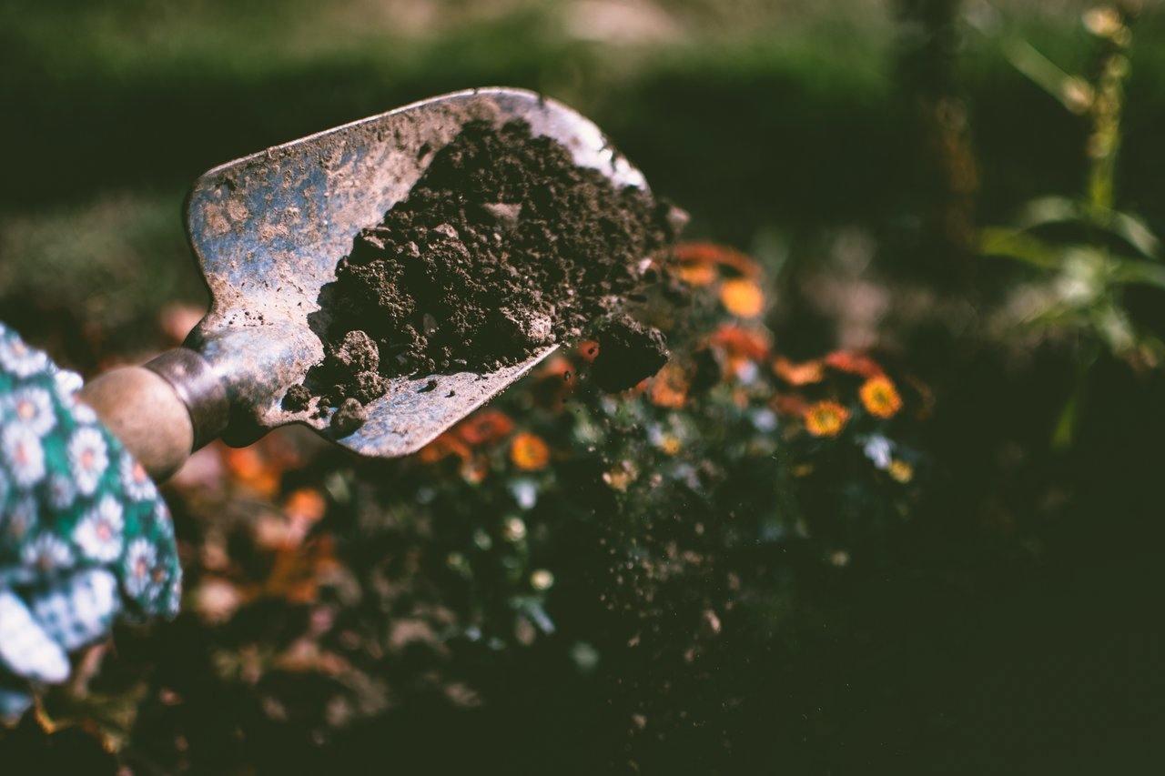 soil in garden shove image